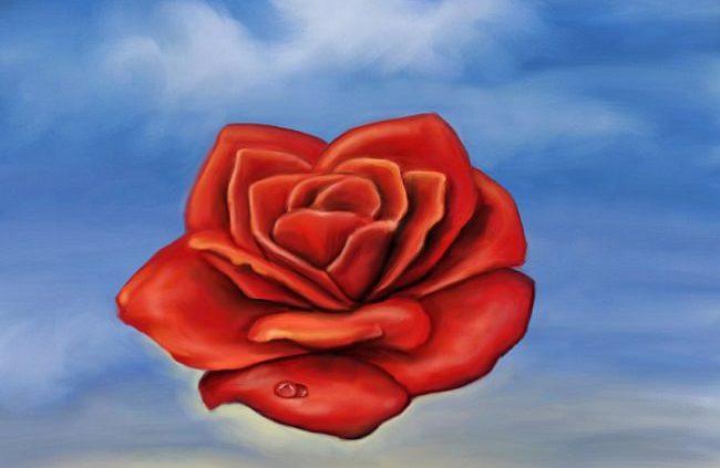 rose méditative, Salvador Dali, 1958